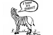 Stres u radu kod zdravstvenih djelatnika i što s njim?